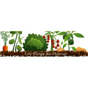 Los blogs de María
