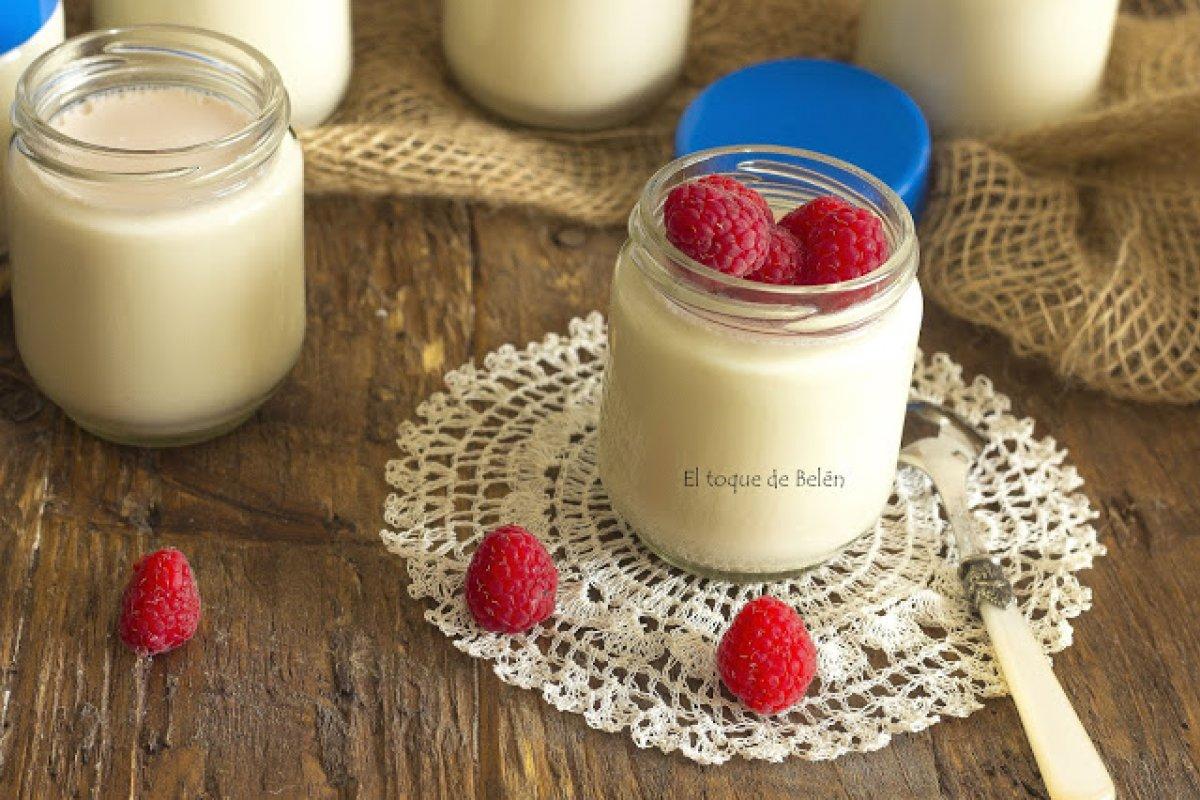 Yogur de soja con yogurtera y consejos
