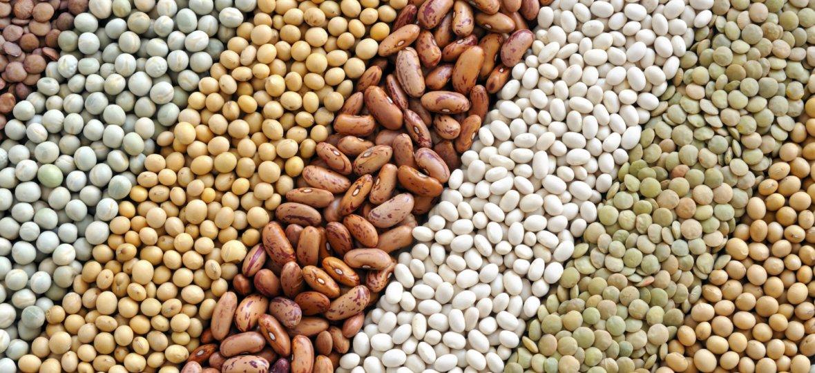 10 de febrero primer día mundial de las legumbres