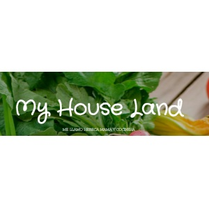 My house land